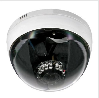 Sony CCD DSP Network Camera Dome IP Camera